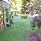 BBQ-courtyard-resized